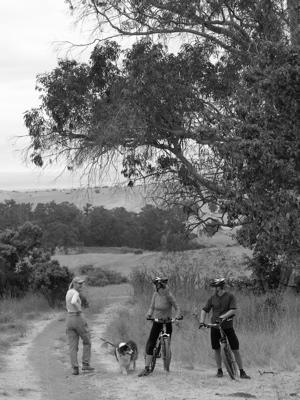 A walk in Arastradero Preserve