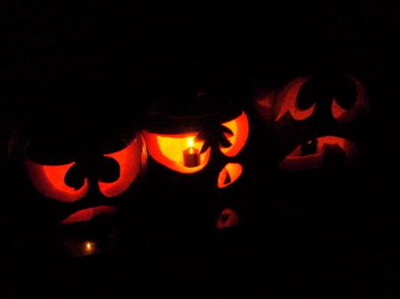 This year's crop of porch pumpkins