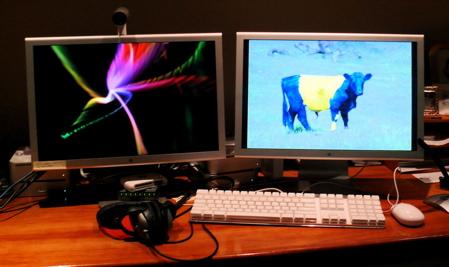 Dual 20-inch displays