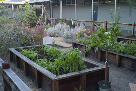Oak Knoll's Secret Garden