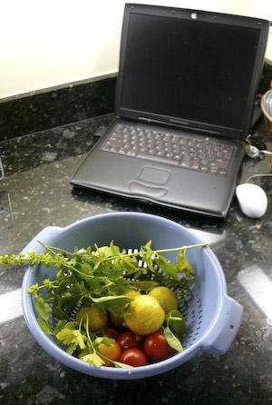 Harvest from dotcom garden w/kitchen computer