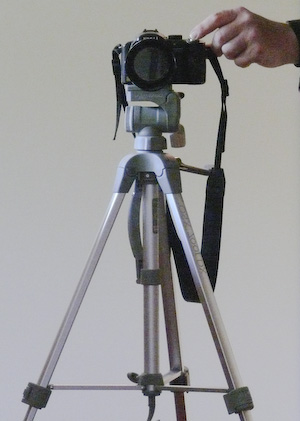 Lumix DMC FZ50 on QuantaRay lightweight tripod
