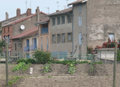Kitchen garden (potager) at Pont de Vaux