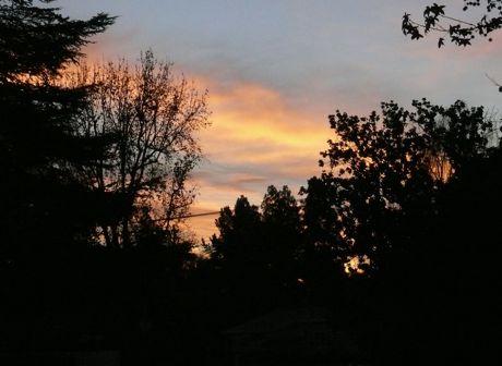 sunrise_12_23.jpg