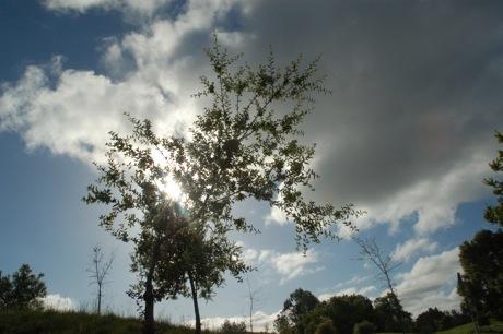 sky_stanford.jpg