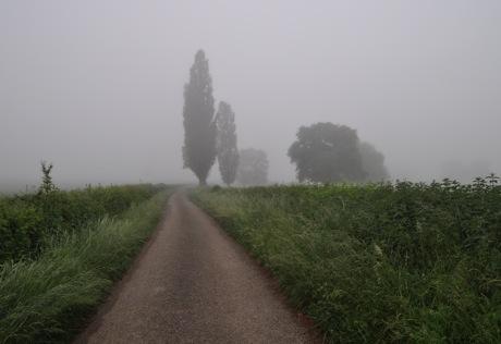 fog_path