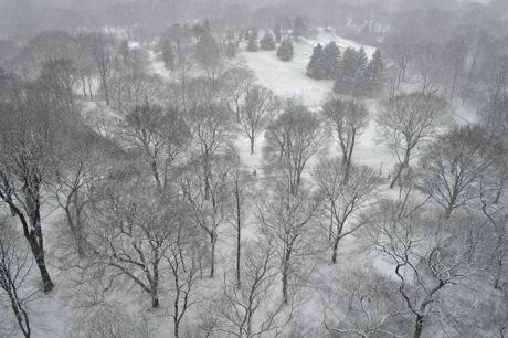 park_snow_2