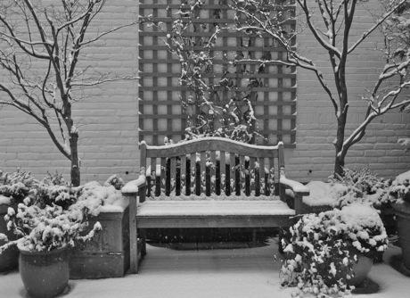 bench_snow