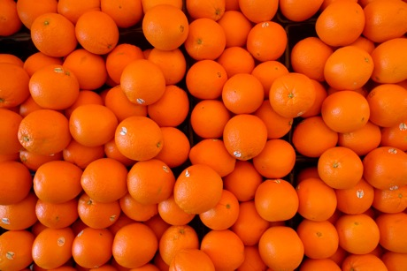 oranges_bianchinis