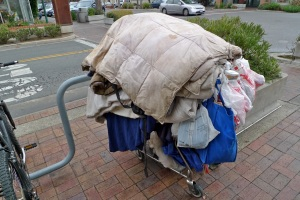 homeless_woman_cart